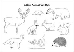 British Animal Cut-Outs – Black and White Arctic Animals, Forest Animals, Woodland Animals, British Wildlife, Wildlife Art, Animals Black And White, Stencil Font, Embroidery Motifs, Forest School