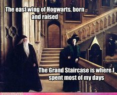 """Playing some Quidditch outside of school, when a couple of Slytherins that were up to no good, started making trouble in the neighborhood, I got in one little duel, and McGonagall got scared, said """"You're having detention in the forest with Fang and Hagrid.""""    LIFE COMPLETE"""