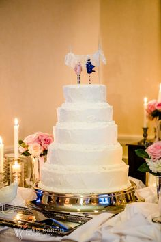 Wedding cake table. Pink and navy bird toppers, rustic frosted cake, white and ivory taper candles, mint julep cups to hold bridesmaid bouquets. Photos of the final product! My navy blue and blush pink wedding!!!! ( navy, blush, white, ivory, silver wedding colors )