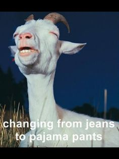 Heck yes...or just taking my jeans off period!