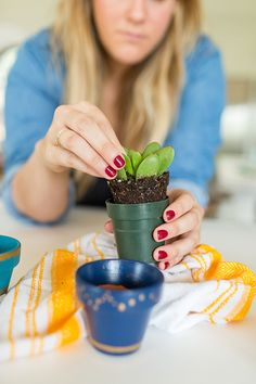 Planting succulents in DIY painted pots