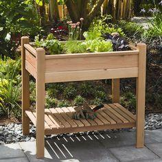 Cedar wood planter box