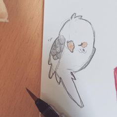 Just a lil budgie doodle :> \\\ *-* Cyoooot