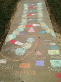 Biology Genetics Activity: DNA replication models my class made with chalk on our sidewalks displaying anti-parallel structure of DNA, sugar-phosphate backbone, base pairs following Chargaff's Rules linked by hydrogen bonds, action of enzyme helicase and polymerase in adding daughter strands to the original parent strands within the replication bubble at the replication fork! Glencoe High School - Mrs. Barkley - Spring 2014 - Pic 1