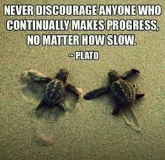 Never discourage anyone who continually makes progress, no matter how slow. ~Plato