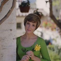 See the evolution of Julie Andrews' iconic career and personal life through these rarely-seen photos, including pictures of her childhood, early career, and time on iconic movie sets. California Honeymoon, Victor Victoria, Billie Burke, Abc Photo, Church Ceremony, Julie Andrews, Classic Movie Stars, Iconic Movies, Celebrity Travel