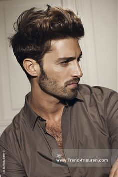 Franck Provost Short Brown Male straight Curly Top French Men Hairstyles hairstyles