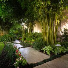 Creative DIY Japanese garden designs that you can build yourself to complement your B . Creative DIY Japanese garden designs that you can build, Garden Garden backyard Garden design Garden ideas Garden plants Tropical Landscaping, Modern Landscaping, Garden Landscaping, Landscaping Design, Garden Paths, Landscaping Software, Landscaping Contractors, Florida Landscaping, Garden Fencing