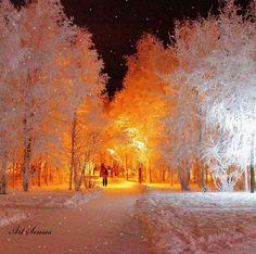 Photography winter nature snow walks New ideas Winter Szenen, Winter Walk, Winter Magic, Winter Light, Winter Photography, Nature Photography, Beautiful Winter Scenes, Gif Animé, Animated Gif