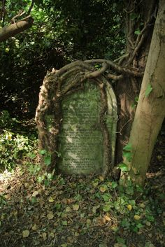 Now *that* is a grave.  Nunhead Cemetery, London ~ photo by HannahB@Seeds and Stitches