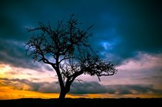 Storm clouds rolling in rain storm sky outdoors nature clouds tree yellow horizon