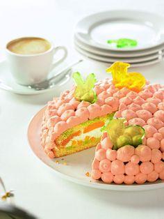 Erfrischende Frühlingstorte - Eine cremige Torte mit Aprikosen und Quark für das Osterfest