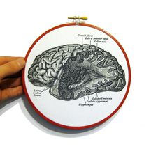 Anatomical Brain Print in Embroidery Hoop by WordosaurusText, $20.00