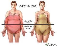 Apple VS Pear Shape- PCOS Symptom Synopsis: Weight Gain/Loss | theprettyplus.com