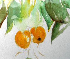 Golden Chinese Persimmons One of a Kind Original by MarilynKJonas, $89.00