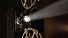The flickering light of the projector, the sacred object of the memory emporium.