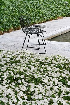Chairs in the MoMA Sculpture Garden  by Scott Norsworthy, via Flickr