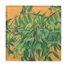 Ash-tree, green yellow summer greenery floral art glass coaster