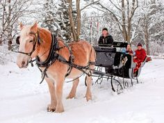 Over the river and through the woods...winter sleigh ride!