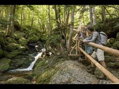 Garden Bridge, Outdoor Structures, Youtube, Waterfall, Tourism, Hiking, Woodland Forest, Destinations, Vacation