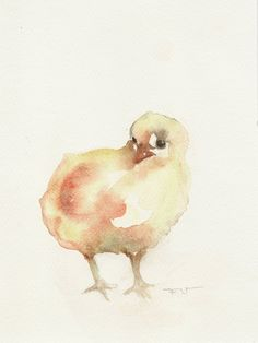 Chicken, original watercolor.. via Etsy.