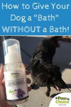 Now you can freshen up your dog and eliminate odor without the mess, stress, or time needed for regular bath time! Introducing Paw Choice Foaming Mousse Dry Dog Shampoo. Click to learn more and shop now...