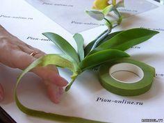 Цветок орхидея Леди Слиппер из полимерной глины, мастер класс часть 2 - Цветы из полимерной глины - Полимерная глина - Каталог статей - Рукодел.TV