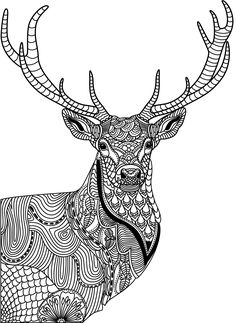 818 Best Animal Coloring Pages For Adults Images In 2019 Coloring