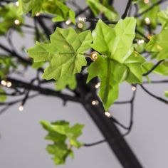 Lámpara de pie LED ÁRBOL - Lámpara de pie súper de moda. Imita a un árbol con sus hojas y lleva 450 LEDs. Esta lámpara en forma de árbol da un toque muy especial a su terraza o jardín.