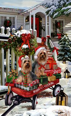 """New for 2012! Silky Terrier Christmas Holiday Cards are 8 1/2"""" x 5 1/2"""" and come in packages of 12 cards. One design per package. All designs include envelopes, your personal message, and choice of greeting. Select the inside greeting of your choice from the menu below.Add your custom personal message to the Comments box during checkout."""
