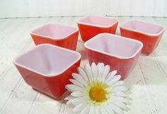 Pyrex OvenWare Fridge Bowls Set of 5  Vintage Mid by DivineOrders, $28.00