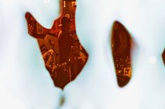 Shooting Film: Creatively Destroyed Film Photography by William Dauel