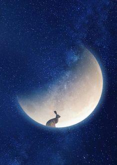 by Marta Barcikowska x print on matte card Signed by the artist Lapin Art, Illustration Art, Illustrations, Collage Vintage, Rabbit Art, Bunny Art, Beautiful Moon, Moon Art, Pics Art