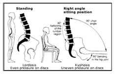 53 Best Chairs For Lower Back Pain Images Crunches