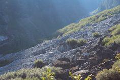 Boulder field, Hanes Valley. Photo by Danielle Gorgerat.