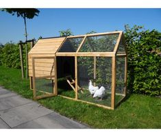 Chicken coop Meggi Source by bluephone