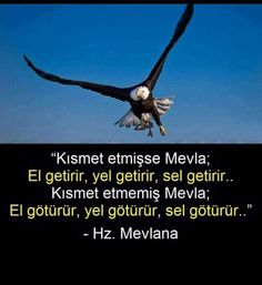 Zitate von Mevlana – Sevgi Yalgın – Join the world of pin Reminder Quotes, Me Quotes, Famous Words, Allah Islam, Words Worth, Stephen Hawking, Sufi, Meaningful Words, Quotes About God