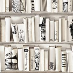Downstairs loo or landing - Muriva Encylopedia Wallpaper Bone (572217) - Muriva from I love wallpaper UK