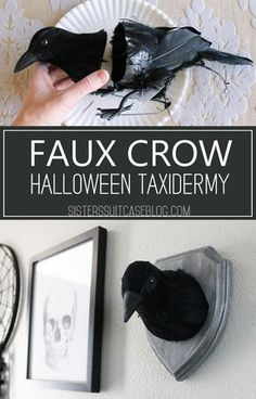 Make this easy DIY Faux Crow taxidermy for a Halloween Gallery Wall or spooky party decor! Just a few dollars in supplies from the craft store! DIY Halloween Halloween Gallery Wall - My Sister's Suitcase Halloween Tags, Halloween Prop, Halloween Mignon, Casa Halloween, Theme Halloween, Halloween 2019, Holidays Halloween, Halloween Crafts, Holiday Crafts