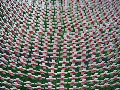 remembrance day - Google Search Flanders Field, Remembrance Day, Westminster Abbey, Rugs, Google Search, Home Decor, Farmhouse Rugs, Decoration Home, Room Decor