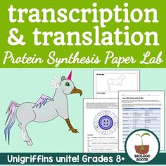 Protein synthesis blueprint activity genetics activities and protein synthesis transcription and translation paper lab protein synthesis simulation for life science or malvernweather Choice Image