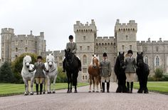 The Queen's horses are welcoming visitors to the Royal Windsor Horse Show, which starts today. Horses from left to right: Alpine, Mingulay, George (named after the Queen's Father), Anson, Dawn and Emma (The Queen's Riding Pony).Grooms, from left to right: Harriet White, Zoe McDonald, Christopher Allen and Sadie Henderson.