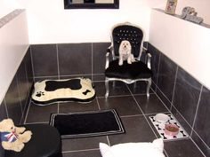 Luxury Dog Boarding Kennels | The Boarding Kennels your dog would choose - Essex Pooch Palace !