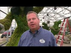 This year's Epcot International Flower & Garden Festival, which runs March 7-May 20, will feature the largest-ever Disney topiary (a Sorcerer Mickey) and a new Haiti: Garden of Many Colors display located in World Showcase. Here's a sneak peek at some of the work that went into creating this year's festival.