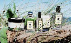 Jo Malone London launches Wood Sage & Sea Salt range
