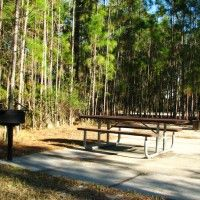 The Perfect Wheelchair Accessible Campsite