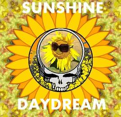 Sunshine Daydream Stealie