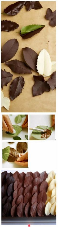 How to make chocolate leaves ~ I have been doing this for years and it works like a charm! :) Cake decorating tips and tricks Food Cakes, Cupcake Cakes, Fruit Cakes, Mini Cakes, Decoration Patisserie, Food Decoration, Art Decor, How To Make Chocolate, Chocolate Art