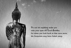 """,,Laß Dich von nichts dazu veranlassen Deine Augen von Buddha abzuwenden. Denn wenn du wieder nach ihm Ausschau hältst, sind seine Fußspuren vielleicht verschwunden."""""""
