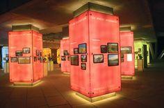 El biomuseo de Frank Gehry para la ciudad de Panamá